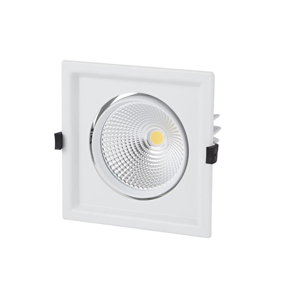 Biard Foco Empotrable LED Orientable de 30W