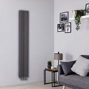 Radiador de Diseño Vertical - Aluminio - Gris Claro - 1600mm x 245mm - 579 Vatios - Aloa